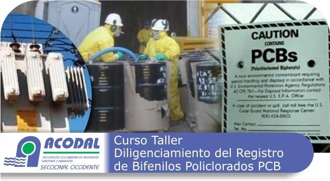 Curso Taller: Diligenciamiento del Registro de Bifenilos Policlorados PCB