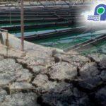 Curso Tratamiento de Lodos Provenientes de Potabilización de Aguas y de Tratamiento de Aguas Residuales Domésticas e Industriales – APLAZADO ::::: PRÓXIMAMENTE NUEVAS FECHAS