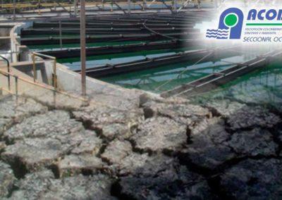 Curso Tratamiento de Lodos Provenientes de Potabilización de Aguas y de Tratamiento de Aguas Residuales Domésticas e Industriales
