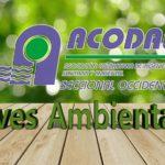 Planes Ambientales En El Desarrollo Territorial De Municipios