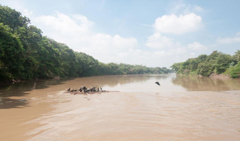 Reviven propuesta de filtrar lecho del río Cauca por agua para Cali