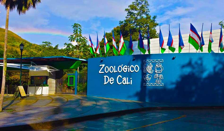 Zoológico de Cali le apuesta a la conservación y aprovechamiento ...